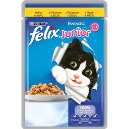 Hrana umeda pentru pisica junior cu carne de pui 100g