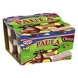Desert budinca cu gust de ciocolata si vanilie 4 bucati 4x125g