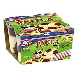 Desert budinca cu gust de vanilie si ciocolata 4 bucati 4x125g