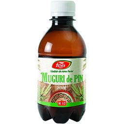 Sirop de Muguri de pin 250ml