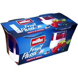 Iaurt cu fructe de padure 2x125g